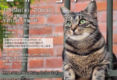 sekainekoaruki_00